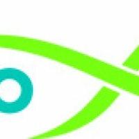 Placeholder for ZLTO logo 768x244